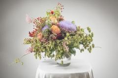 Blumen im Herbst 26.08.2014   copyright by Foto Fischer, Herrengasse 7 ( Altstadtpassage ),  8010 Graz, Tel.: 0043/ 316/ 82 53 22,  Fax DW4, e-mail :