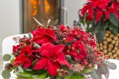 2016_Weihnachtsstern_Winterstube_03