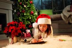 2019_poinsettia_01000_Christmas_Wishlist_03