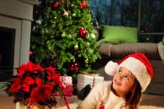 2019_poinsettia_01000_Christmas_Wishlist_04