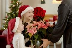 2020_poinsettia_04000_Country_Christmas_Charm_05